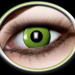 84080441.819 green eye